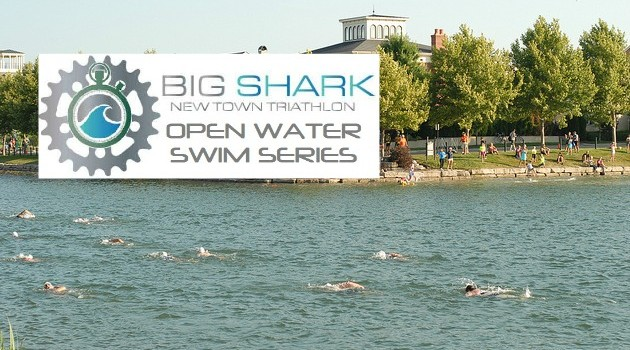 openwaterswimseries